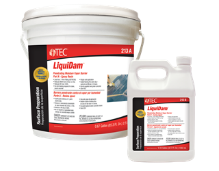 TEC 213_LiquiDam_Group_(1218).png